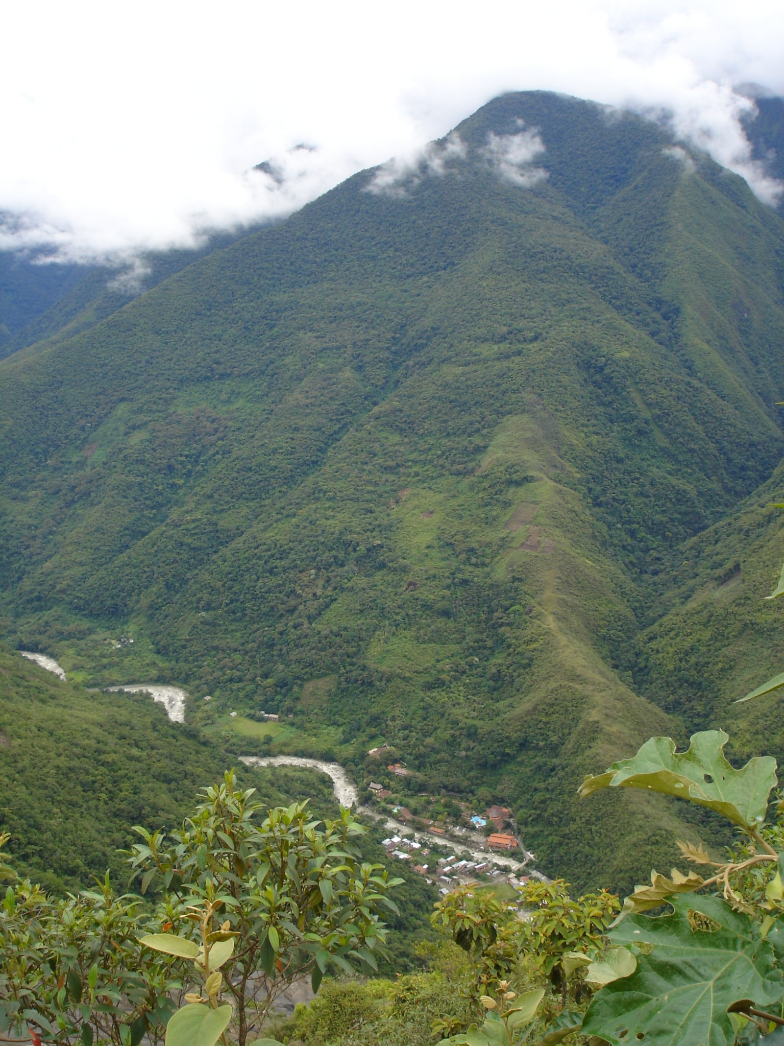 016_bolivien_03_ls_rs_yungas